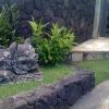 20090729-img_1754